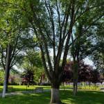Parc Bocsa_Judetul Caras-Severin