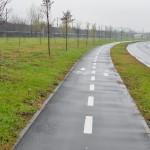 Piste Biciclete, Arad